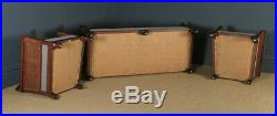 Antique Edwardian Chippendale Style Three 3 Piece Mahogany & Cane Bergere Suite